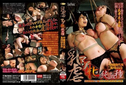 CMC-119 Breast Torture Masochist Female Purebred