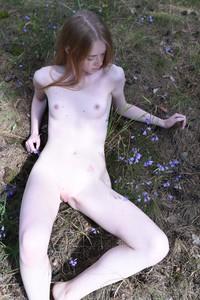 Gerda - Dream Of Gerda