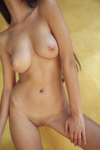 Paula-Shy-%E2%80%93-Parnel--16ubn9ih5o.jpg