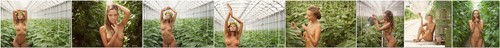 1546263007_tomato.farmer.000022 [ArtOfDan] Katya Clover - Tomato Farmer